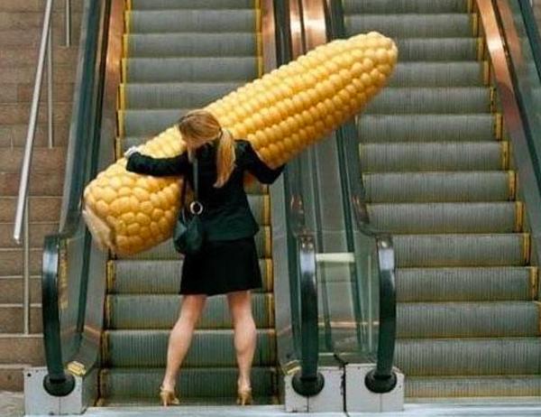 1. Den här tjejen verkar gilla majs. Frågan är bara var hon hittade denna?