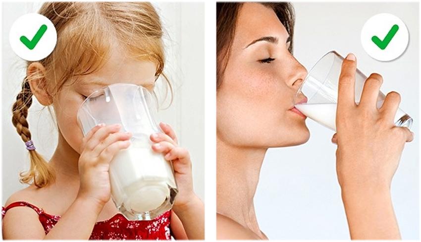 1. Även vuxna kan dricka mjölk idag. Genen som hjälper oss människor att smälta mjölk har utvecklats genom evolution. I början kunde vi människor bara dricka mjölk när vi var barn.