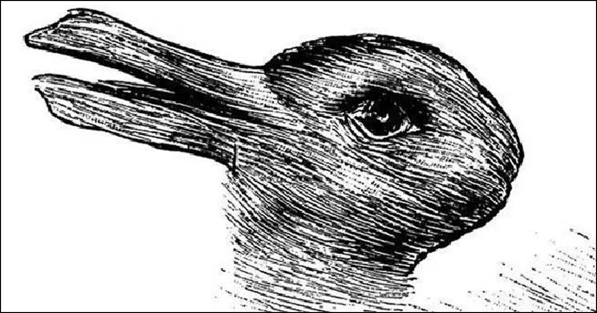 Anka eller kanin?