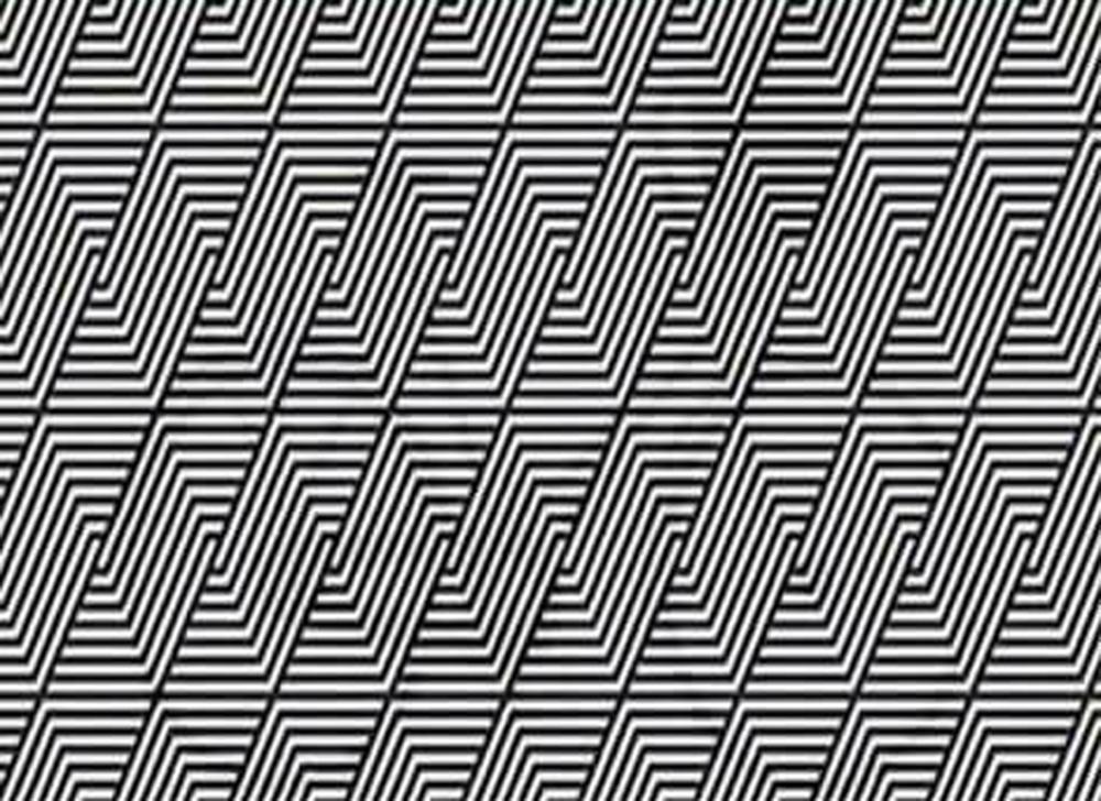 Vad ser du i bilden?