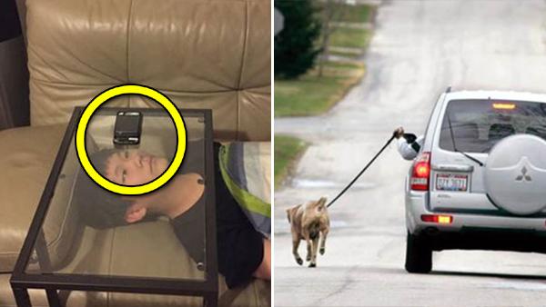 11 bilder som visar att människan är latare än någonsin