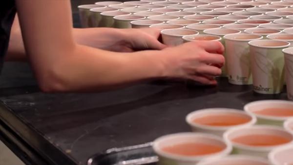 66 tusen muggar placeras ut på golvet - när vi förstår varför blir vi helt sålda
