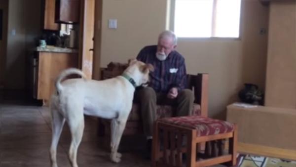 Han har Alzheimers och har tappat talförmågan helt och hållet - men se bara vad som händer när de släpper in en hund