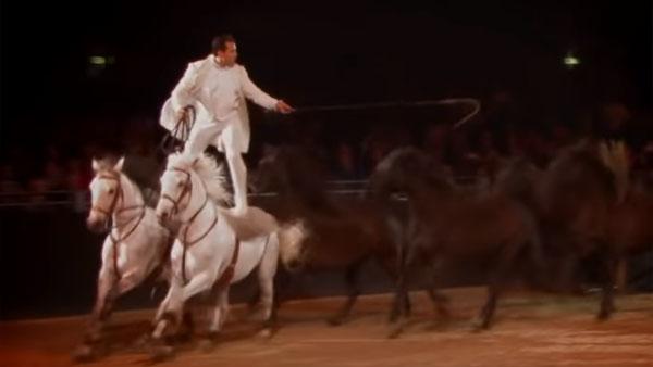 Tillsammans med sina hästar gör han något ingen annan gjort tidigare - det här får alla i publiken att häpna