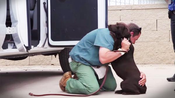 En fånge fick chansen att uppfostra hunden – men titta bara nu när de säger adjö