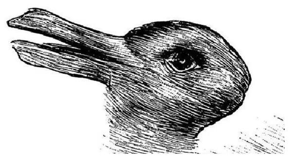 Ser du en Anka eller kanin? Svaret säger något intressant om din personlighet.