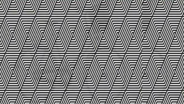 Synvillan: Kan du se vad som gömmer sig i bilden?